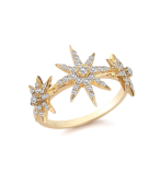 Elizabeth and James 22K gold plated compass ring white topaz